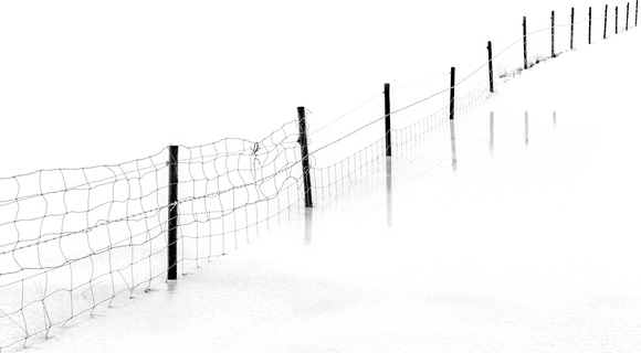 Icelandic Fence in black and white